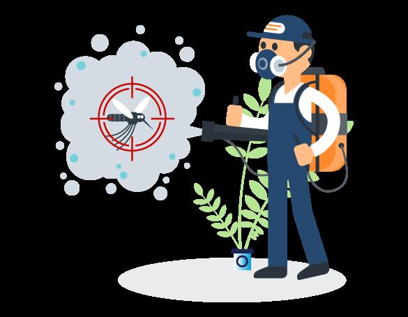 Professional Pest Control Coomera